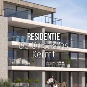 Residentie-De-Drieskens-Kermt